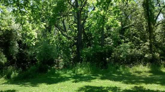 amherst state park