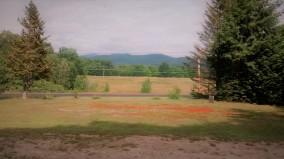 shamrock motel view