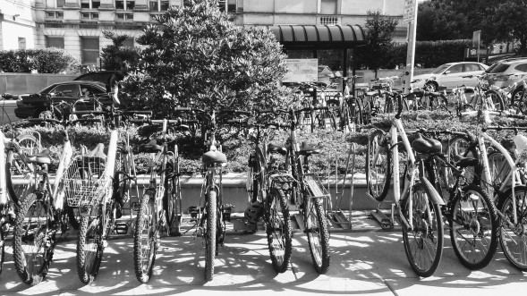 black and white bikes