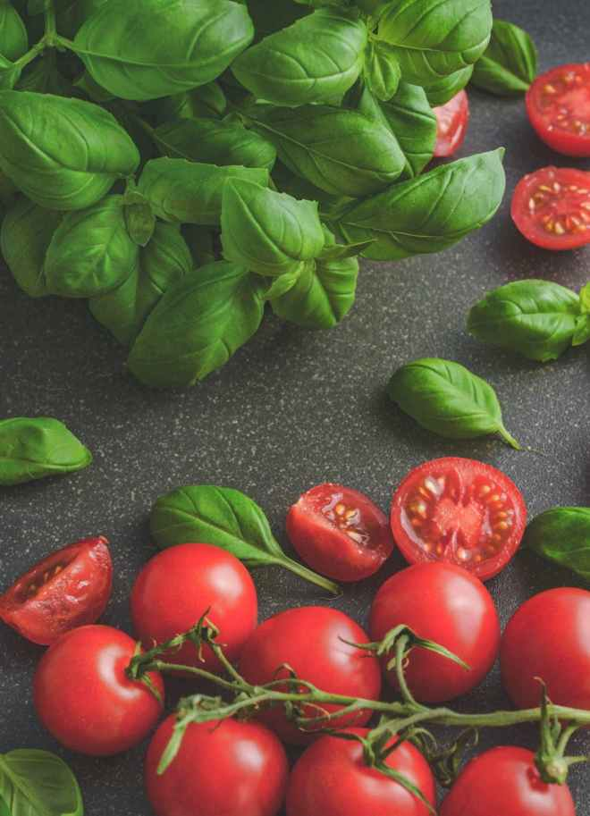 photography of tomatoes near basil leaves