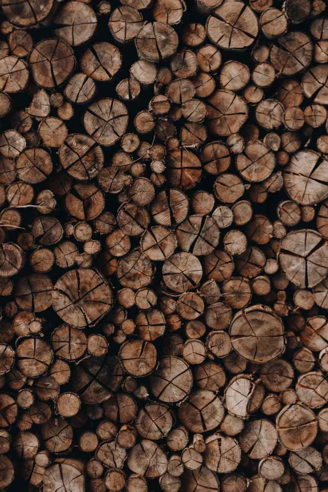 photo of woodpile